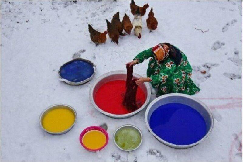 عکاس اهری مدال طلا جشنواره بین المللی قرقیزستان را کسب کرد