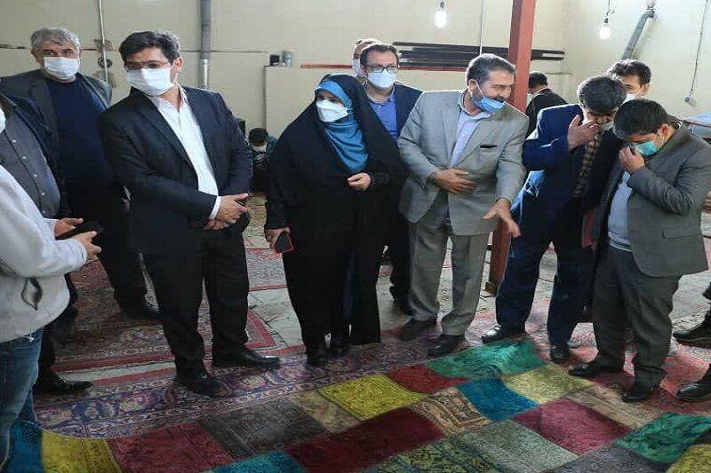 ۲ شرکت تعاونی فرش دستباف و کارگاه قالیشویی در اردبیل افتتاح شد